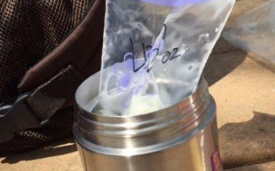 Cum dezghețăm sau încălzim laptele de mamă